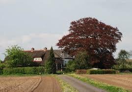 rode beuk voor landhuis